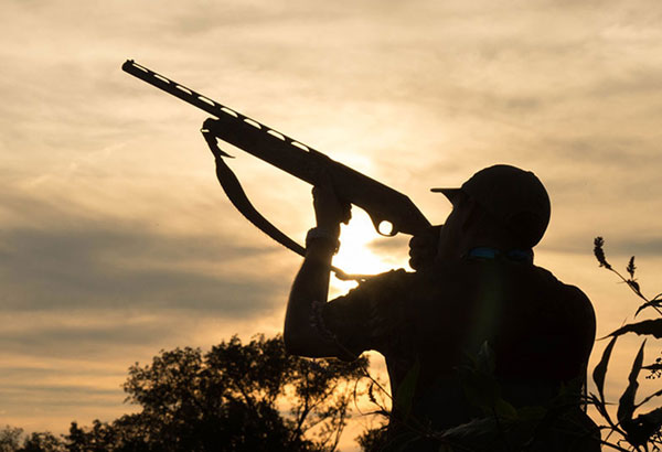The Best Choke for Dove Hunting | Top 7 Picks