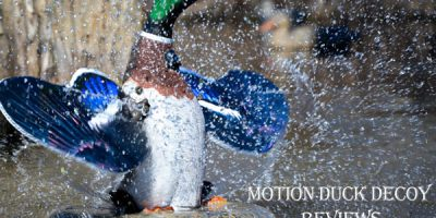 10 Best Motion Duck Decoy Reviews with Buying Guide
