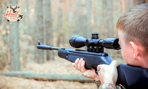 7 Best .22 Air Rifle For Hunting (For Rabbit, Squirrels And Raccoon)