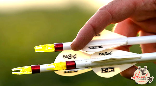 7 Best Arrow Nocks | Reviews and Buying Guide 2021
